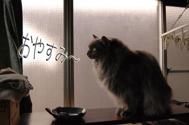 Dejiichi09021193