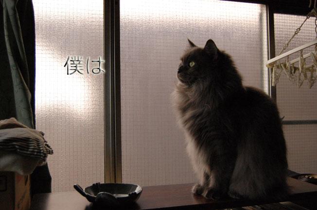 Dejiichi09021195